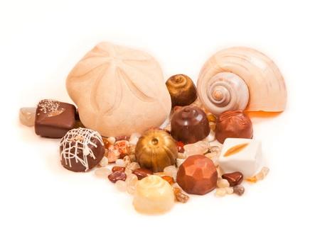 sand dollar: Un d�lar de arena hinchada y una c�scara del nautilus mar est�n rodeados de chocolates artesanales y peque�as rocas pulidas sobre fondo blanco.