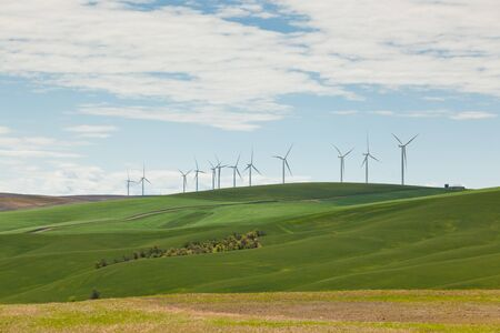 Giant windmills line a ridge of rolling farmland that is green with this years crop in Eastern Washington.
