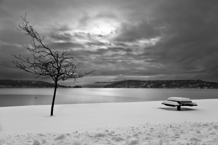 A winter scene of a bench and a bare tree in snow with a lake, cloudy sky and distant mountains in the background done in black and white.