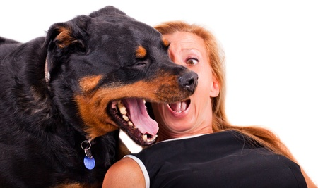 A funny expression of a blonde woman caught by surprise as her Rottweiler yawns in her face