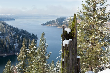A dead tree stump covered in moss and accented with snow stands on a mountainside adding its unique beauty to a winter lake landscape.