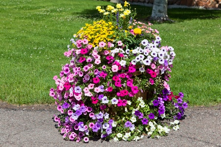 A variety of colorful summer flowers cascade out of a wooden tub set on a sidewalk for landscaping decoration. Stock Photo - 18308229