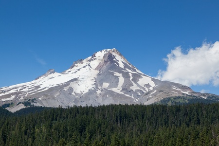 subduction: The barren top on Mount Hood in Oregon still partially covered by snow in summer with a thick green forest below.