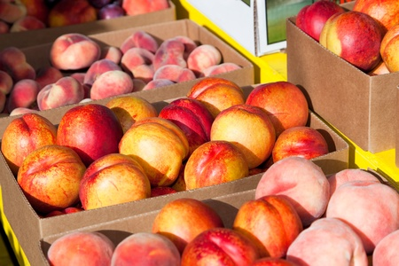 The afternoon sun lighting boxes of freshly picked nectarines and peaches at a roadside fruit stand in Washington. 版權商用圖片