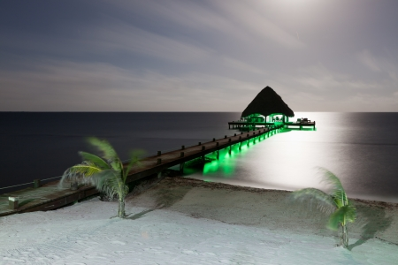 A long exposure of a beach with a dock and small palm trees lit by the moonlight and green lights under the dock  Stock Photo