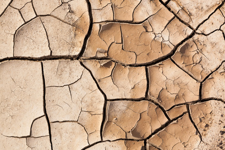 pealing: A muddy area that dried out to create a background of brown cracked earth pealing in to layers.