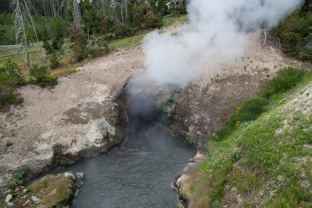 steam mouth: Hot steam rising out of a thermal cave in a hillside with hot mineral water flowing out of Dragons Mouth Spring in Yellowstone National Park.