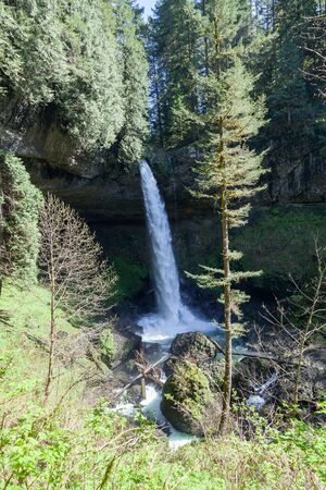 silver state: A tall powerful waterfall in Silver Falls State Park in Oregon flows over a shelf of rock and down a deep canyon.