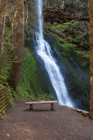 The beautiful Winter Falls with a log slab bench in front located in Silver Falls State Park in Oregon.