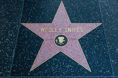 HOLLYWOOD, CALIFORNIA - February 8 2015: Wesley Snipess Hollywood Walk of Fame star on February 8, 2015 in Hollywood, CA.