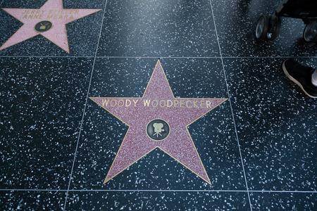 p�jaro carpintero: HOLLYWOOD, CALIFORNIA - 8 de febrero de 2015: del p�jaro loco Paseo de la estrella de la fama el 8 de febrero de 2015, de Hollywood, CA. Editorial