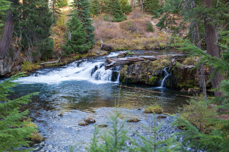 A small waterfall deep in the forest of Oregon;s Cascade Mountain Range.
