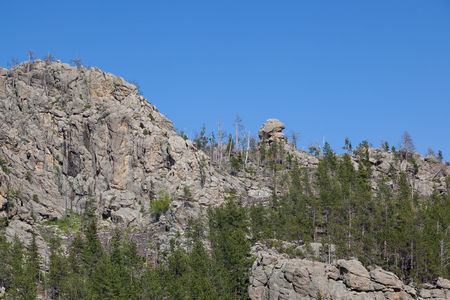 A mountain eroded to expose piles of tall quartz rock among a forest in Custer State Park, South Dakota.