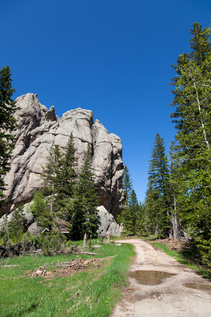 The road leading to the trailhead for Little Devils Tower rock feature in Custer State Park in the Black Hills area of South Dakota. Imagens