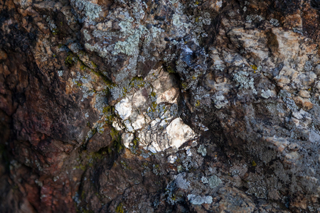 Close up of shiney flakes of mica embeded in an old lichen covered rock.