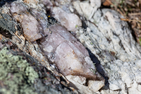 A large rose quartz crystal is embedded in a granite boulder and lit by the bright sunshine in Custer State Park, South Dakota. Zdjęcie Seryjne