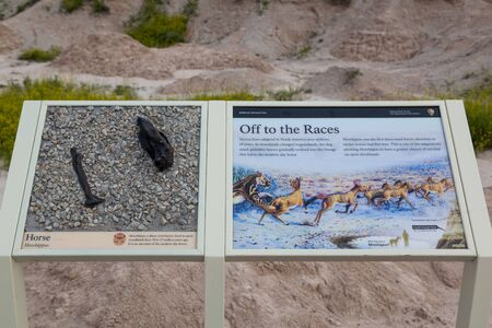 BADLANDS NATIONAL PARK, SOUTH DAKOTA - June16, 2014: A sign provided by the National Park Service that explains about Mesohippus or horse fossils that have been found in Badlands National Park, SD on June 16, 2014. Editorial