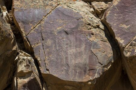 Ancient petroglyphs of deer, bighorn sheep and a man like figure are carved into sandstone rocks at Legend Rock State Petroglyph Site in Wyoming.