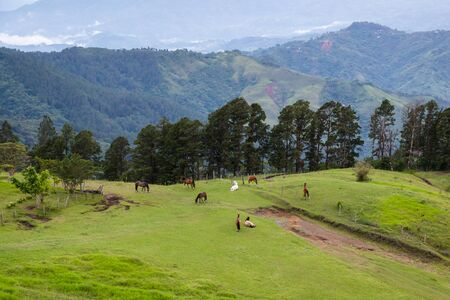 Tranquil horse ranch in mountains of Costa Rica with an amazing view of the mountains and valleys surrounding the area. Stok Fotoğraf