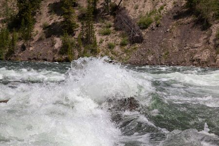 Bright white rapids splashing up in the clean clear water of the Yellowstone River in Yellowstone National Park, Wyoming.