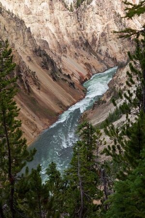 The wild and fast green water Yellowstone River flowing through the colorful steep rocky walls of the Grand Canyon of the Yellowstone in Yellowstone National Park, Wyoming.
