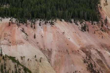 Crisscrossed tracks from large animals who have walked on the steep and colorful walls of the Grand Canyon of the Yellowstone River in Yellowstone National Park, Wyoming.