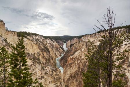 The tall and powerful Lower Falls of the Yellowstone River as it falls into the steep canyon as seen from Artists Point in Yellowstone National Park, Wyoming. Point in Yellowstone National Park, Wyoming.