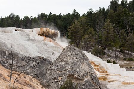 An old grey dormant hot springs cone next to a vibrant white active travertine flow terracing down a hillside at Mammoth Hot Springs, Wyoming. 版權商用圖片