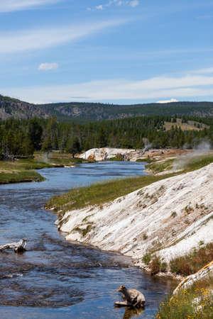 The Firehole River flowing past steaming geysers and into a landscape of trees and mountains at Yellowstone National Park, Wyoming.