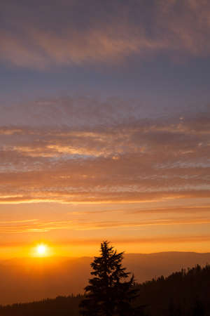 Thick layers of smoke from a nearby forest fire turn the suns rays a glowing orange as it sets over the high Cascade Mountains near Prospect, Oregon with silhouetted fir trees. Stock Photo