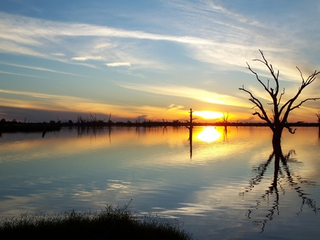 Murray River Sunset