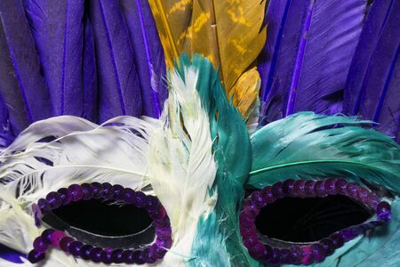 mardi gras mask: Mardi Gras Mask Close Up