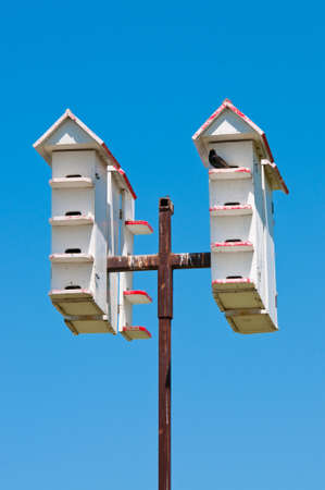 Group of white bird houses up high on a pole with blue sky in background. photo