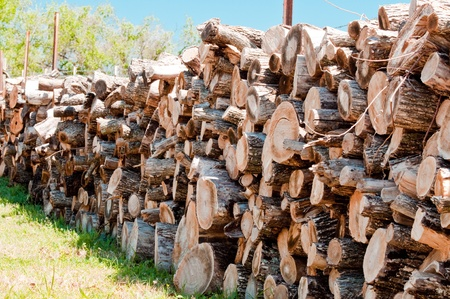 outdoor fireplace: Stack of firewood on farm Stock Photo
