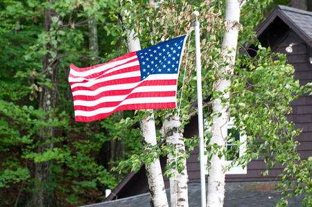 American flag hung out in the trees in front of a house.