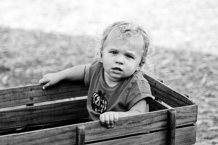 carreta madera: Retrato en blanco y negro de una niña pequeña de pelo rizado adorable que se sienta en un carro de madera.