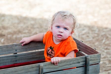 carreta madera: Retrato de una niña pequeña de pelo rizado adorable que se sienta en un carro de madera.
