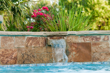 Beautiful swimming pool with flagstone waterfall and pink roses in a garden.