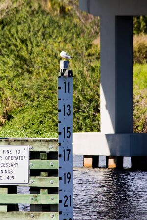 rive: measurement of the water level