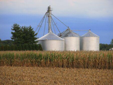 Crop Bins