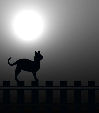 Cat on a fence in the moonlight photo