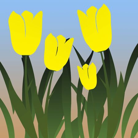 Tulip Garden Illustration
