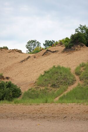 Sand Dune at Mt. Baldy National Park in Michigan City Indiana