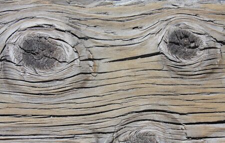 A vintage wooden background texture with knot holes Stock Photo