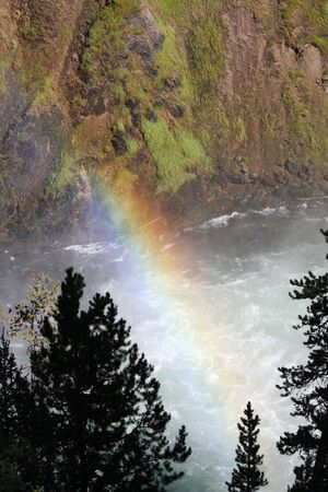 A rainbow through the trees near a waterfall