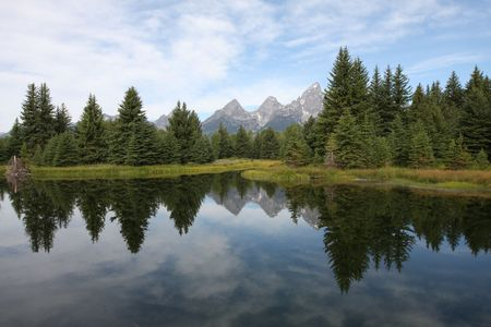 Reflections of pine trees and mountains in a lake