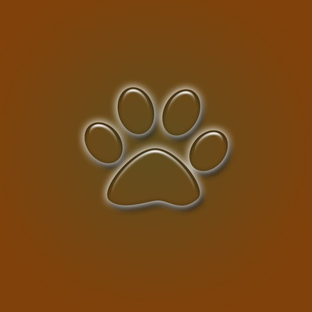 A Paw Print in Browns and shadows photo