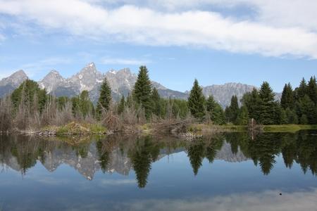 Grand Teton Mountains reflecting in a lake photo
