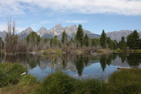 Teton Mountains reflecting in an early morning pond. Stock Photo - 9093360