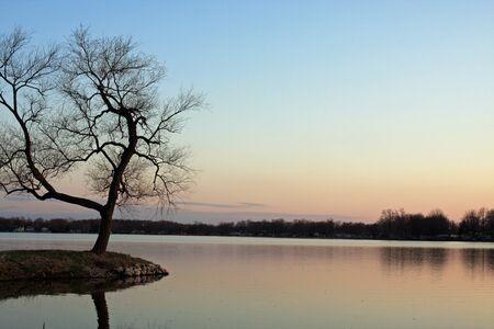 Lone Tree at a lake at sunset